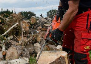 Holzmoebel mit der Kettensaege bauen